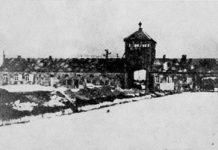 olocausto_foto.jpg
