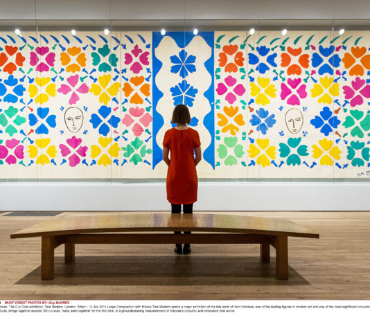 Henri-Matisse-The-Cut-Out-016