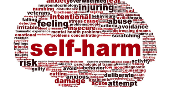 image credit: http://mountpleasantcounsellingcentre.com.au/self-harm/
